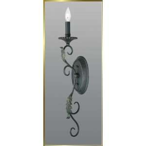 Wrought Iron Wall Sconce, JB 7314, 1 light, Wrought Iron, 4 wide X 27