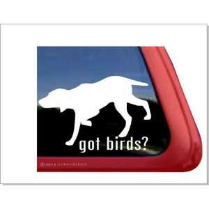 Got Birds? ~ Bird Dog Vinyl Window Auto Decal Sticker