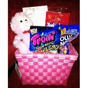 Pink Basket Teddy Bear Valentines Day Gift Basket   Perfect with