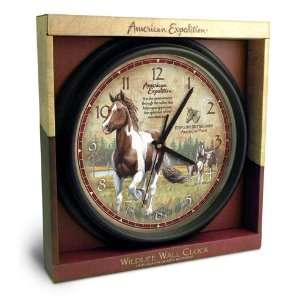 American Paint 16 inch Wall Clock