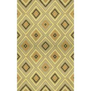 Indoor/Outdoor Hand Tufted Area Rug Kallia 8 x 10 Lime Carpet