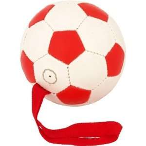 Ball Hi Lites Dog Play Toy 6.25 With Strap