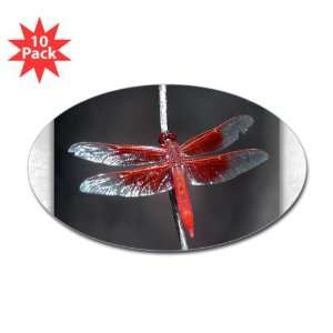 Sticker (Oval) (10 Pack) Red Flame Dragonfly